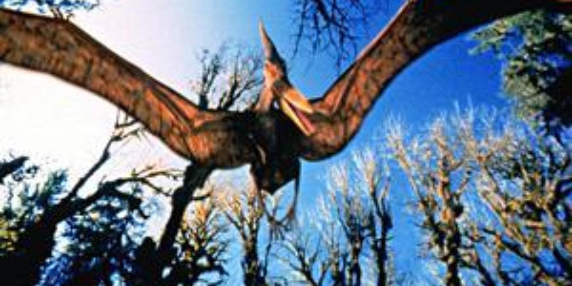 Фильм т-рекс исчезновение динозавров 3d год выпуска и
