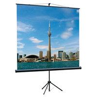 Экран на треноге Lumien 180x180см Eco View LEV-100102, 1:1, напольный, рулонный