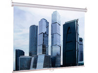 Экран Lumien LEP-100103 Eco Picture 200*200 1:1, восьмигранный корпус
