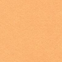 Фетр BLITZ FKC10-30/45 декоративный 30 см х 45 см №100 персиковый