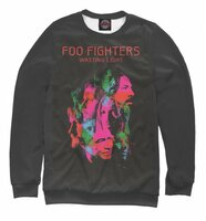 Свитшот Print Bar Foo Fighters Wasting Light (FOO-902797-swi-2XS)