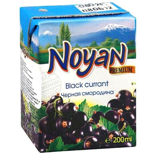 Нектар Noyan Черная Смородина нектар прогресс фрутоняня малышам яблоко и черная смородина с 5 мес 200 мл