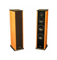 Акустическая система Aleks Audio & Video ID 570 F