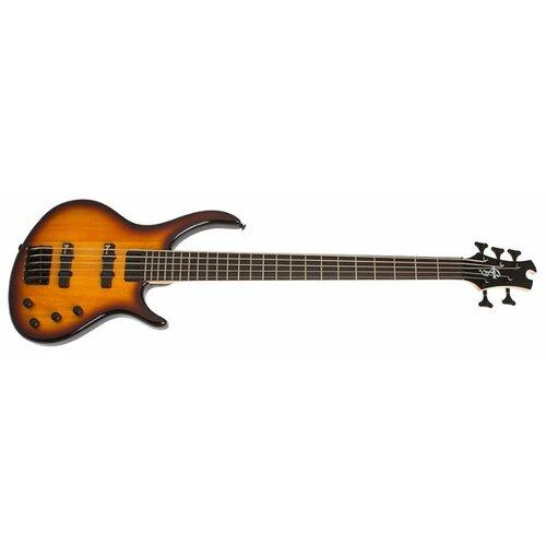 Бас-гитара Epiphone Toby Deluxe V