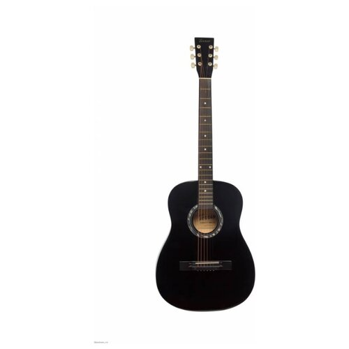 Вестерн-гитара Terris TF-380A BK фото