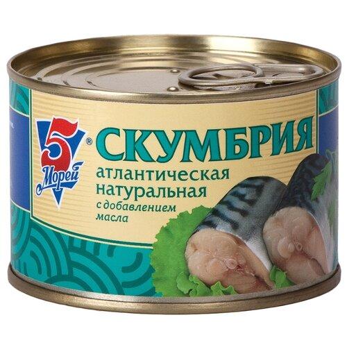 5 Морей Скумбрия атлантическая рыбные консервы трал флот скумбрия атлантическая натуральная с добавлением масла 240 г