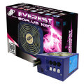FSP Group Everest 80PLUS 1010W