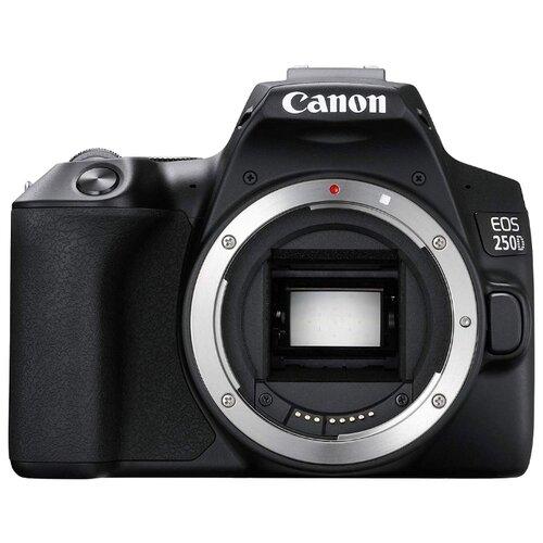 Фото - Фотоаппарат Canon EOS 250D Body skin care mir detstva 40195 children cosmetic for body baby baby bathing
