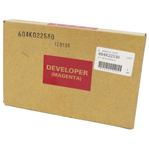 Фото - Девелопер Xerox 604K22530 девелопер xerox 005r90247