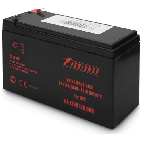 Аккумуляторная батарея Powerman фото