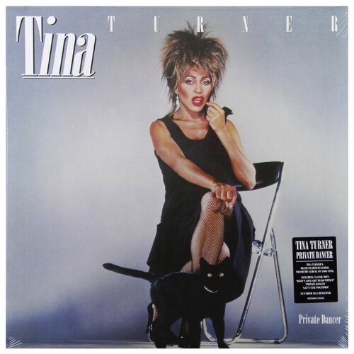 Tina Turner. Private Dancer simply the best the tina turner musical wetzlar