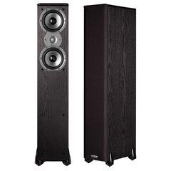 Polk AudioTSi 300