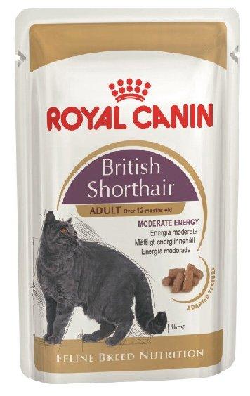Корм royal canin british