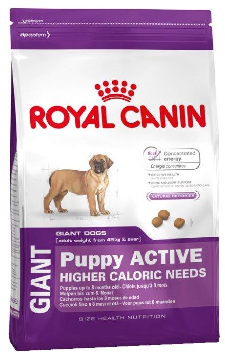 Giant sensible корм royal canin