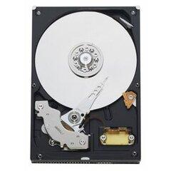 Western Digital WD Blue 320 GB (WD3200AAJB)