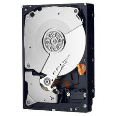 Western Digital WD Caviar Black 500 GB (WD5003AZEX)