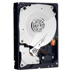 Western Digital WD RE3 750 GB (WD7502ABYS)