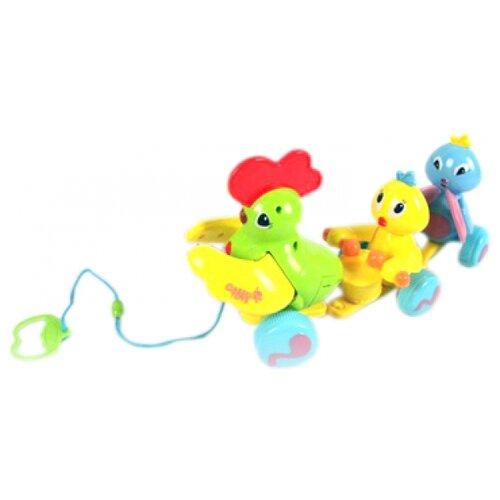 Каталка-игрушка Joy Toy Птичий