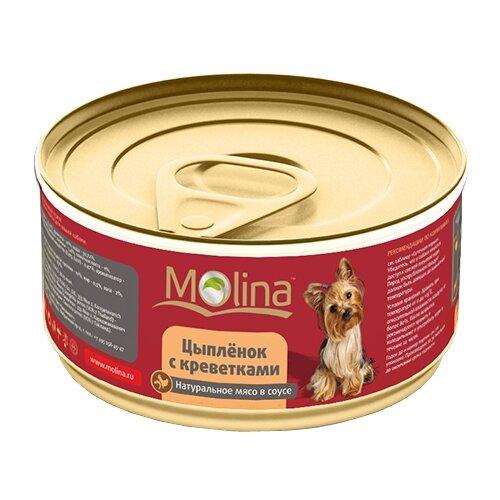 Molina junior maxi/молина для щенков крупных пород