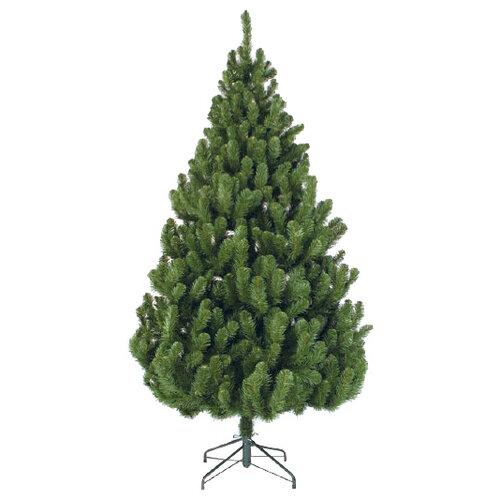Triumph Tree Ель Вирджиния
