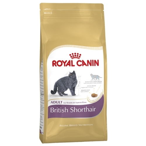 Buy корм royal canin cat food
