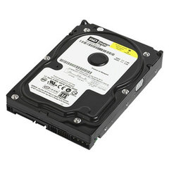 Western Digital WD Blue 80 GB (WD800AAJS)