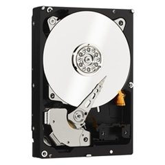 Western Digital WD RE 500 GB (WD5003ABYZ)
