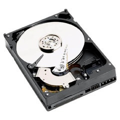 Western Digital WD Caviar SE 160 GB (WD1600JS)