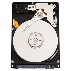 Western Digital WD Scorpio Blue 320 GB (WD3200BEVT)