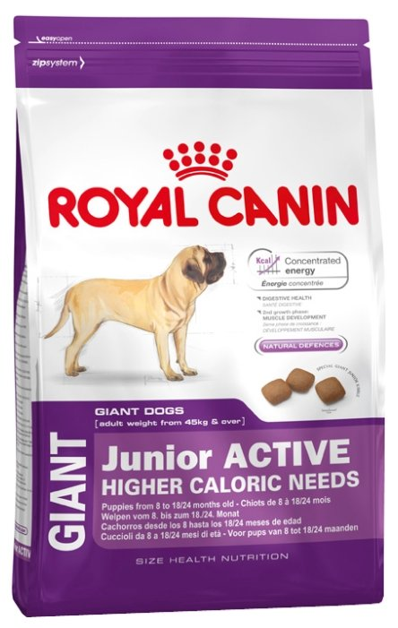 Junior active корм royal canin