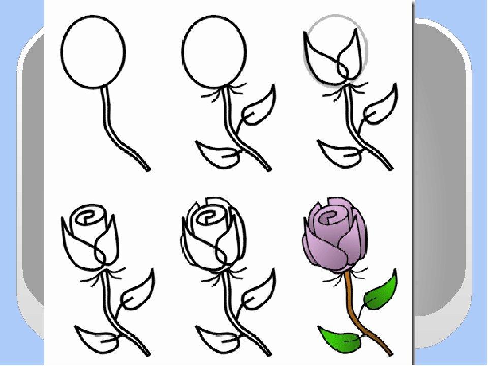 Как нарисовать открытку Lessdraw