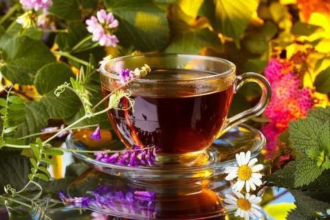 Монастырской чай от алкоголизм