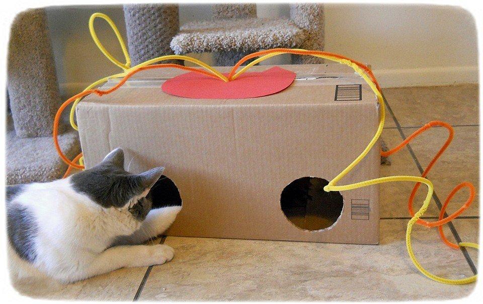 Игрушка коробка для кота своими руками 34