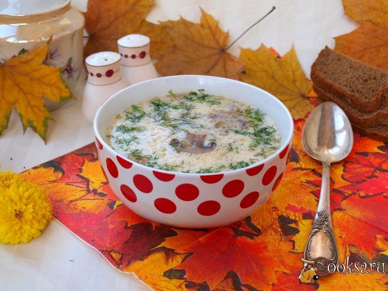 Суп из сушеных грибов с плавленым сыром рецепт