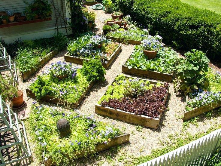 Сад и огород на даче своими руками
