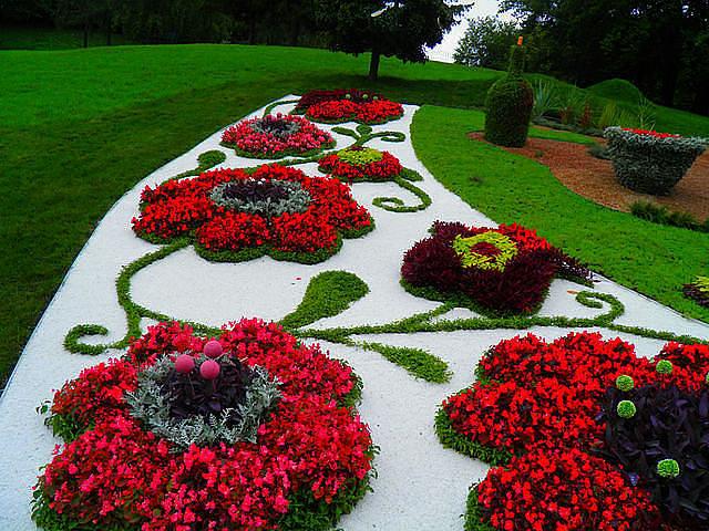 Композиции из цветов на клумбе
