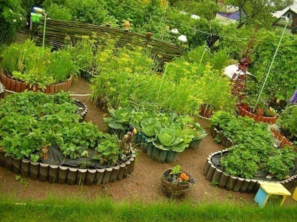 Красиво оформленный огород своими руками