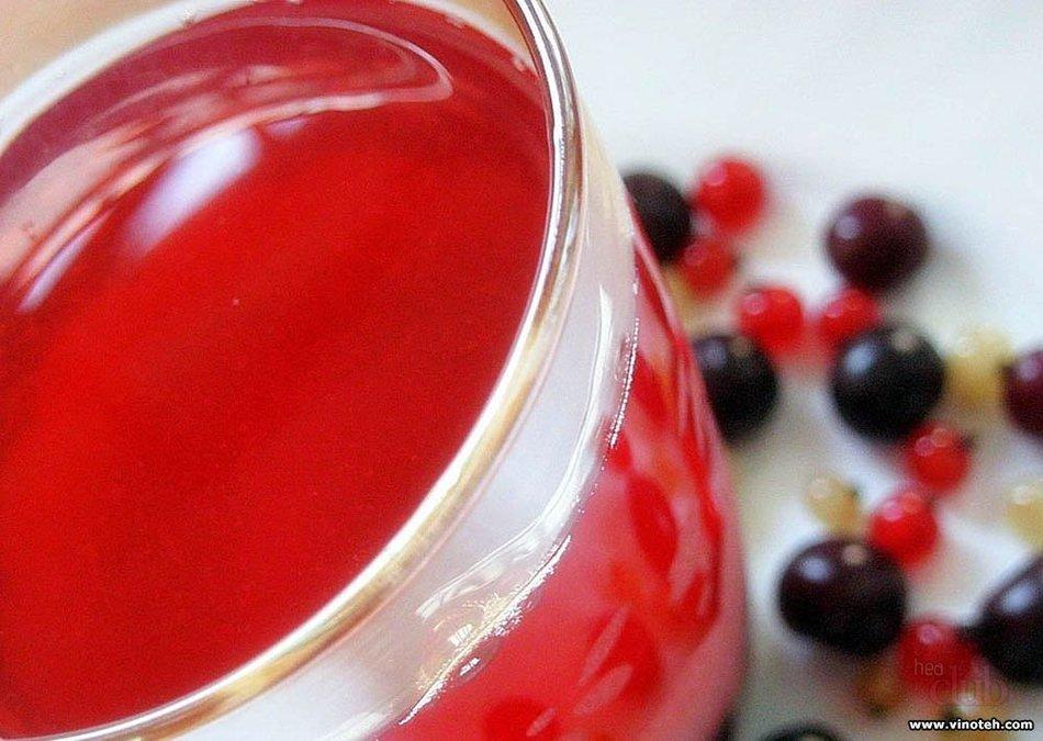 Рецепт сухого вина из красной смородины в домашних условиях 279