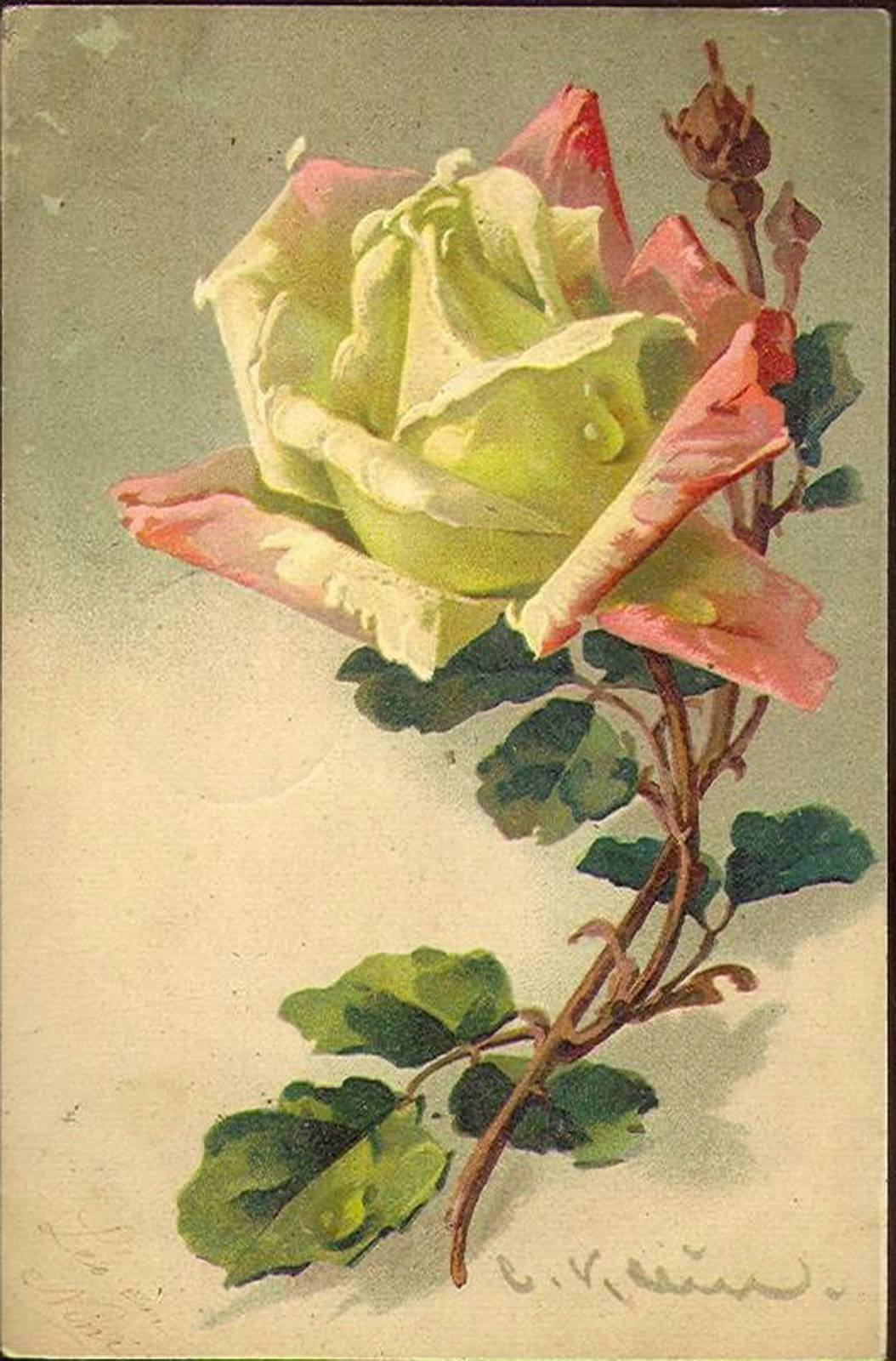 Старинные открытки с цветами фото