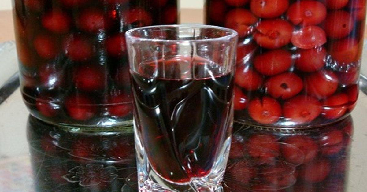 Рецепт вина из абрикосового варенья в домашних условиях 46