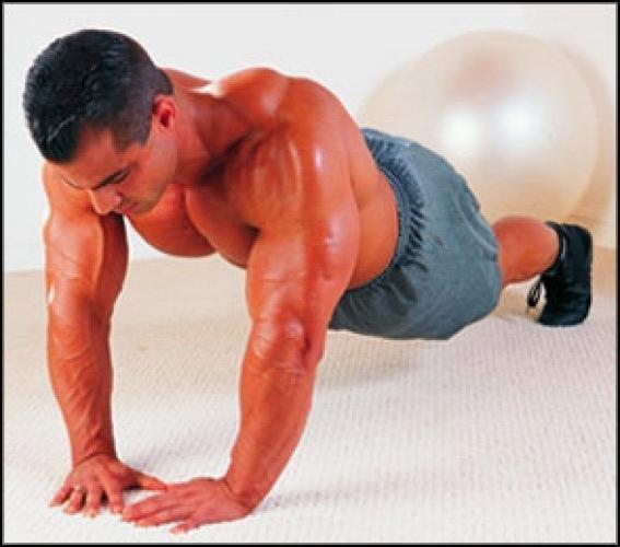 Фото мышцы в домашних условиях