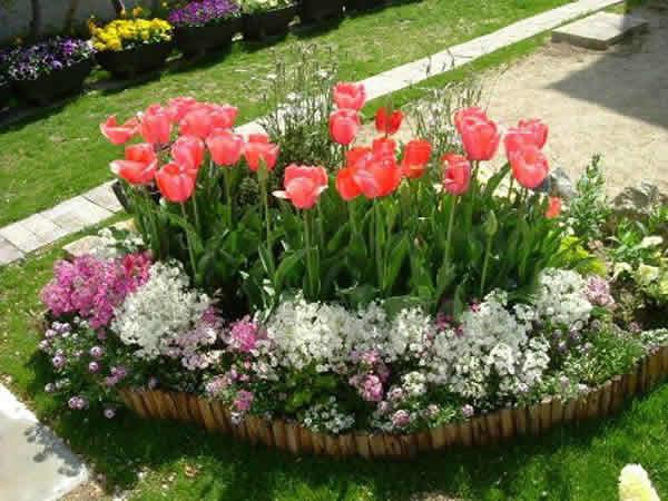 круглые клумбы из тюльпанов фото