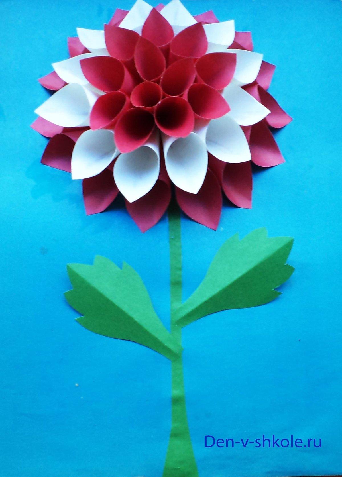 Фото цветка из цветной бумаги