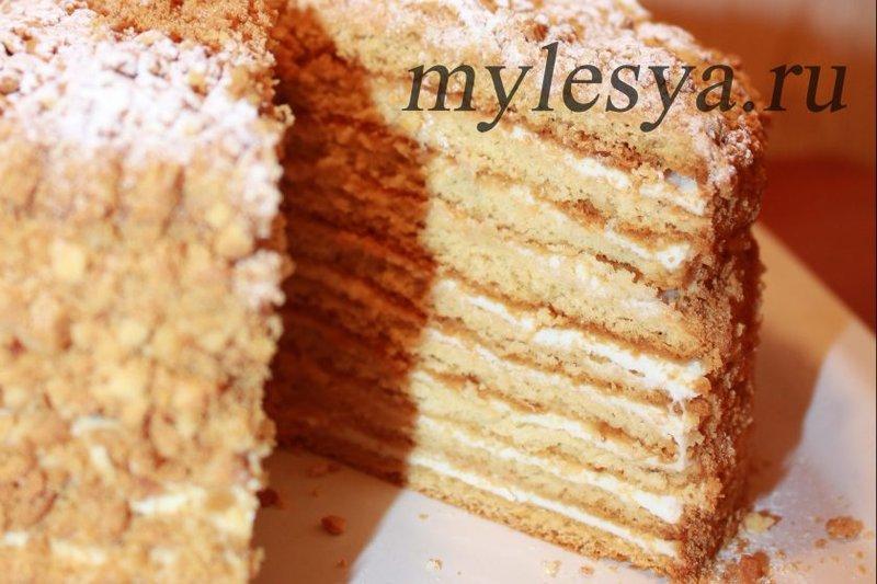 Торт медовый со сметанным кремом рецепт с фото пошагово в домашних условиях