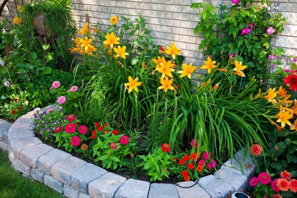 Как можно красиво посадить цветы в саду фото