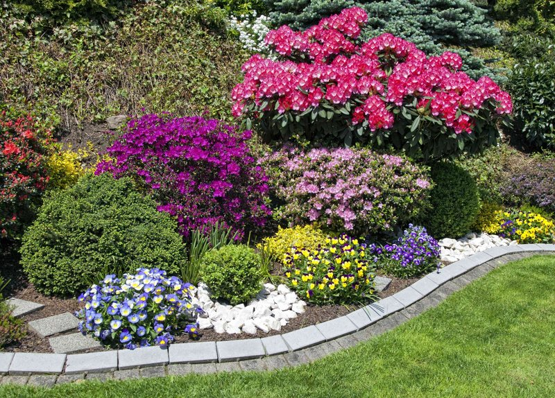 Многолетние цветы в ландшафтном дизайне