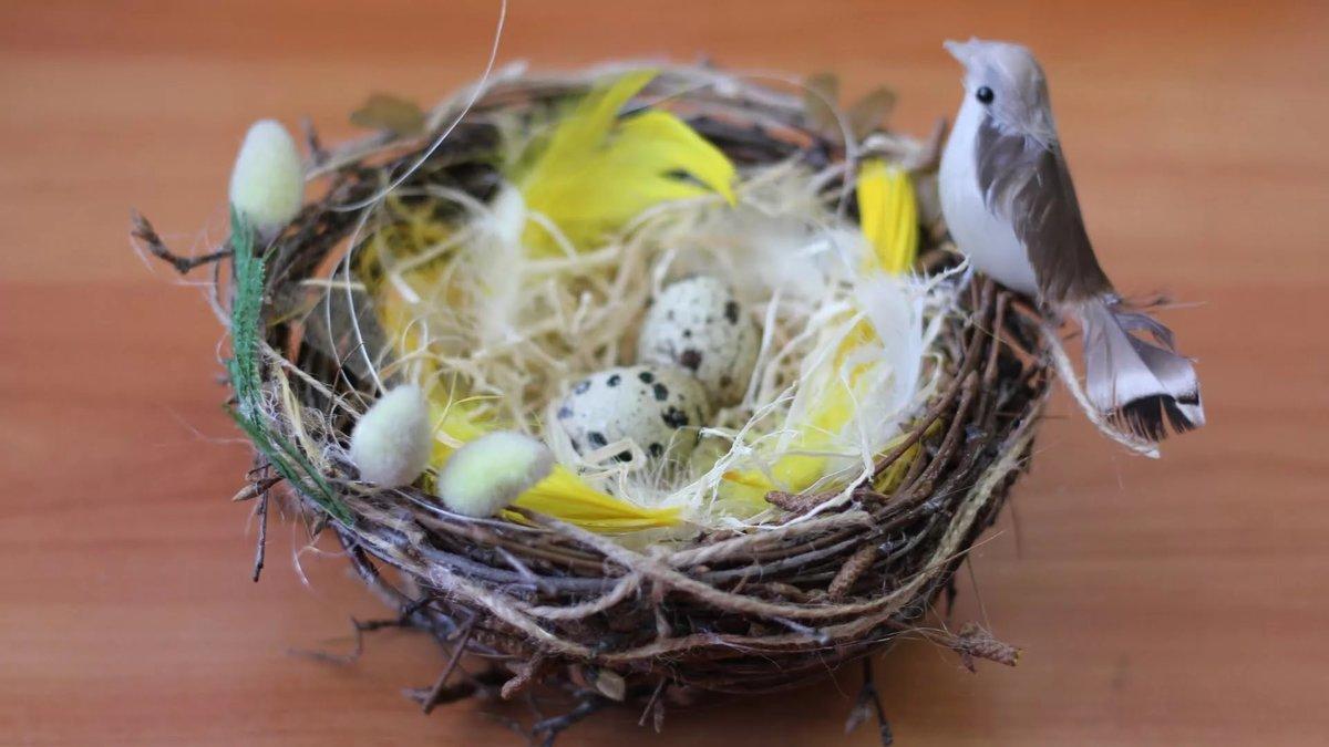 Поделки из яиц своими руками гнездо
