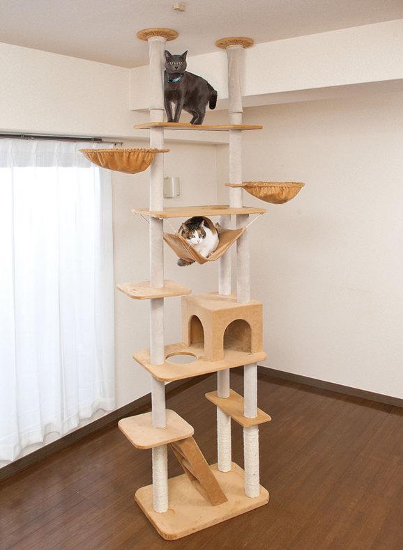 Игровой комплекс для котенка своими руками