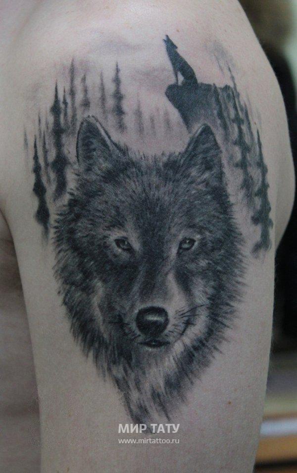 Фото тату с волком на плече