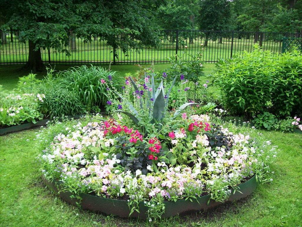 Фото цветников в саду своими руками 10